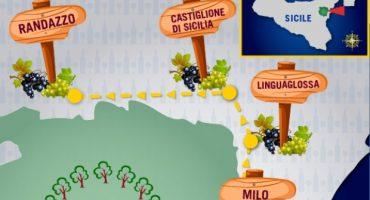 La route des vins: les vignobles de l'Etna