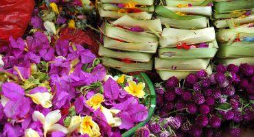 Carnet de Voyage Olfactif: Sur la route des parfums d'Asie
