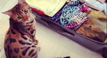 10 conseils et astuces pour alléger votre bagage à main