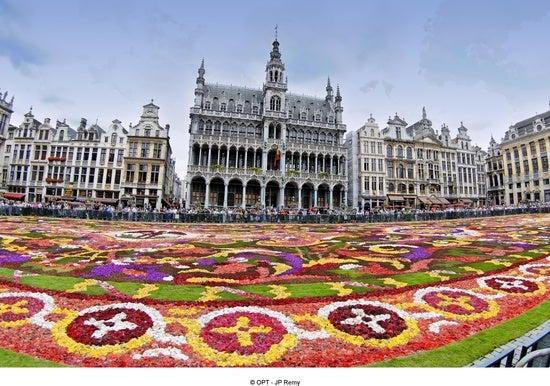 Grand-Place de Bruxelles - Tapis de fleurs