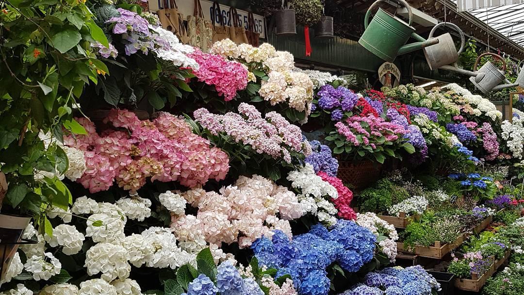 marché aux fleurs louis-lépine paris