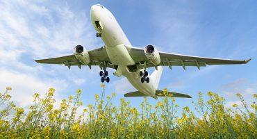 Les compagnies aériennes les plus éco-responsables