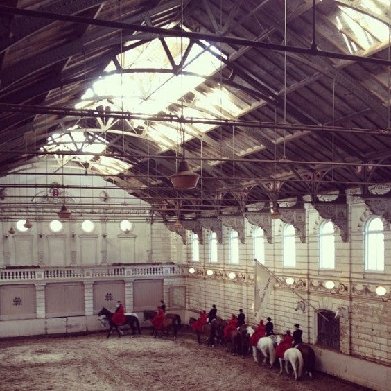 manege hollandais amsterdam