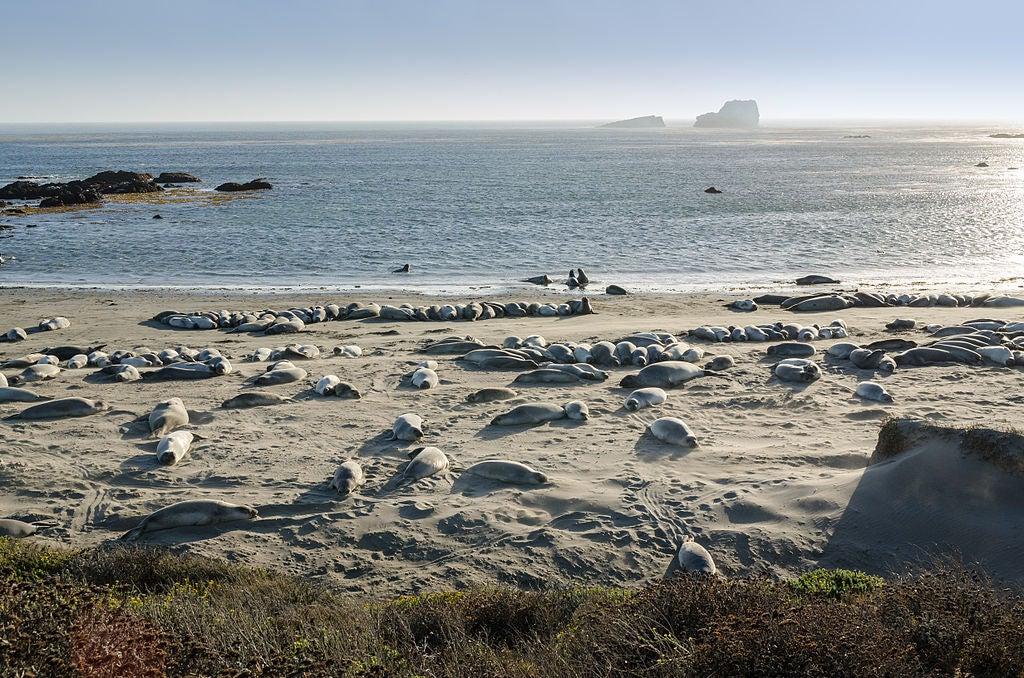 plage de piedras blancas eDreams