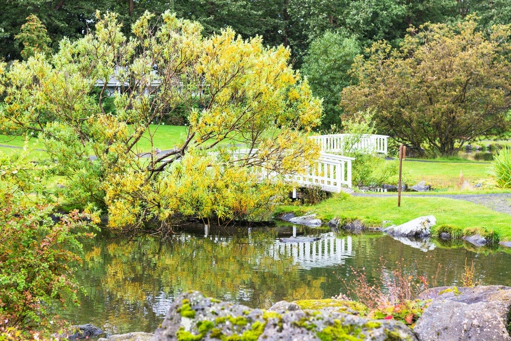 parc Laugardalur - blog eDreams