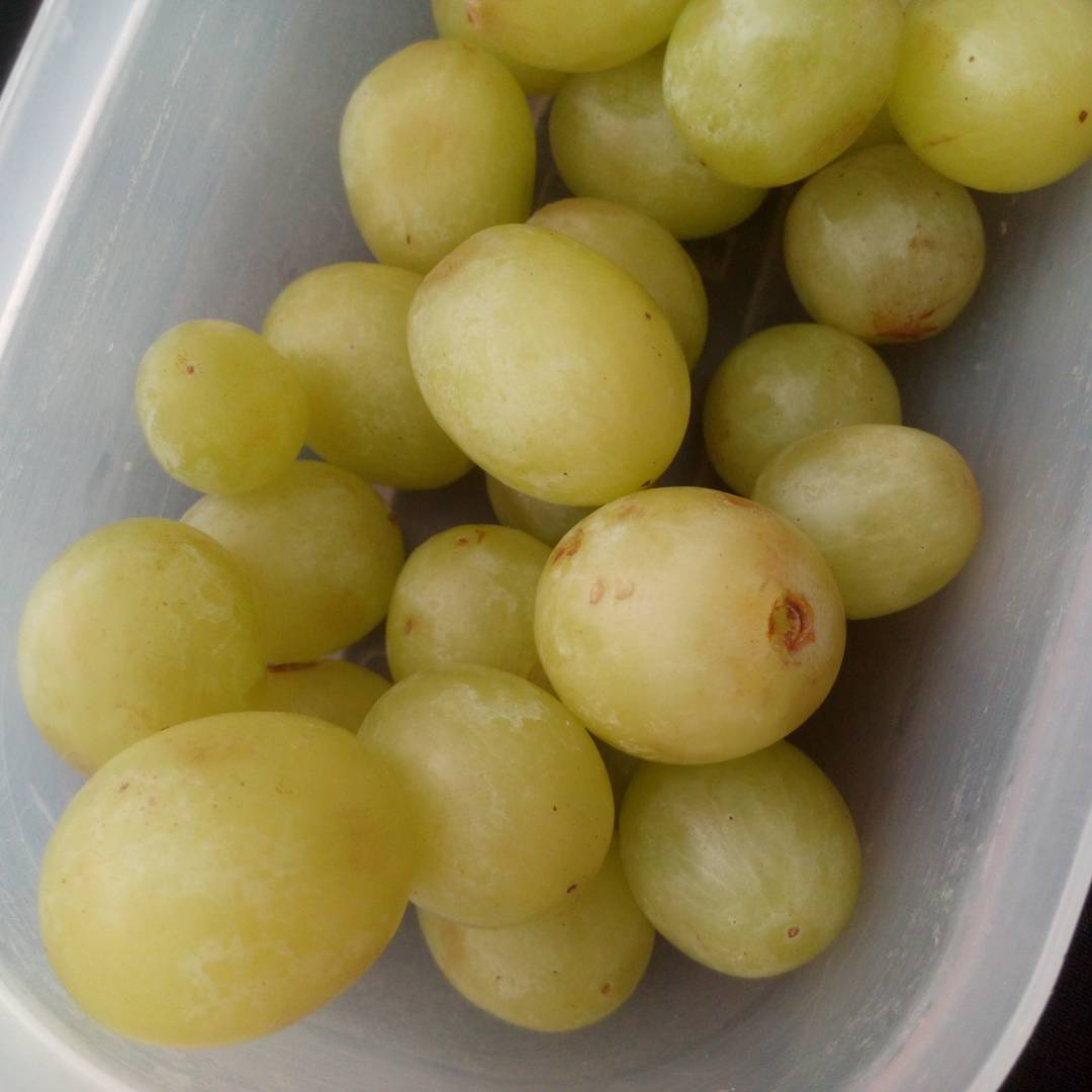 raisins madrid 31 décembre