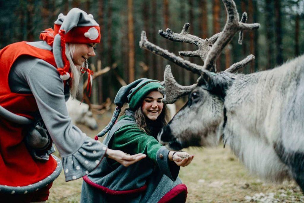 joulukka - blog eDreams