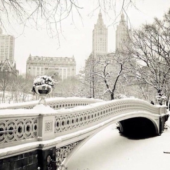 New York Covered in Snow