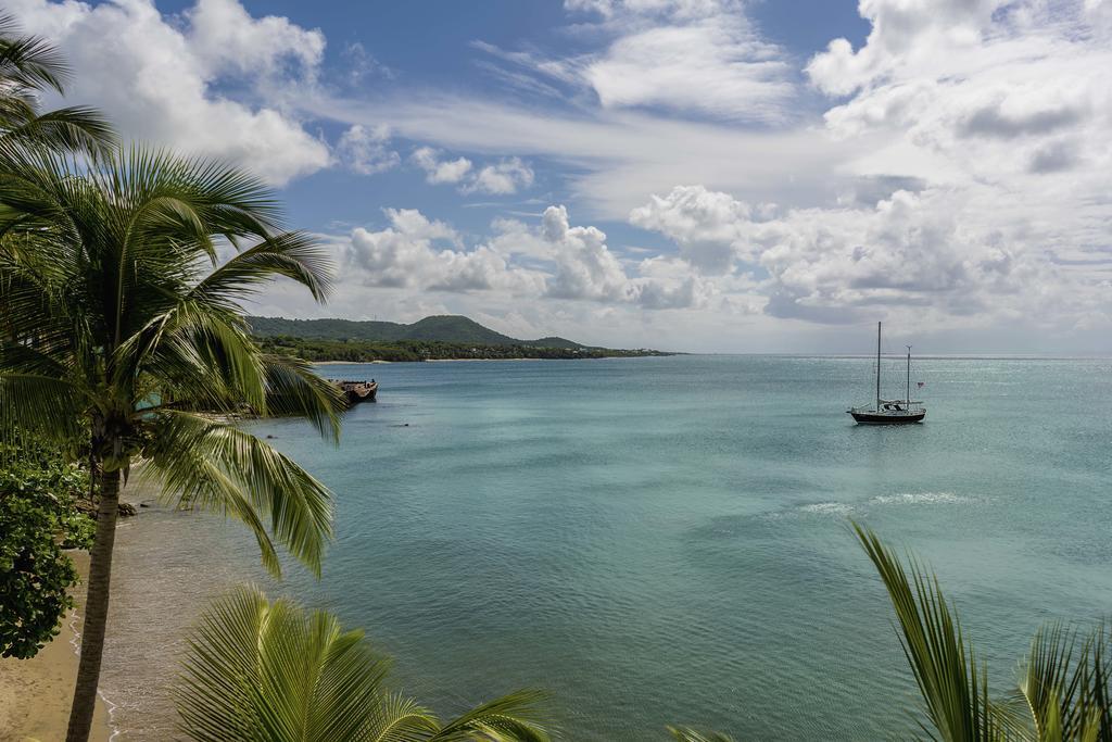 Vieques Porto Rico - blog eDreams