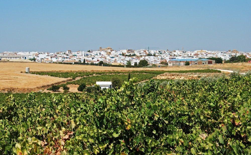 Montilla, Espagne - blog eDreams