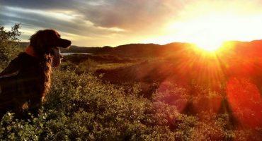 A la recherche du « frilufstliv » en Norvège