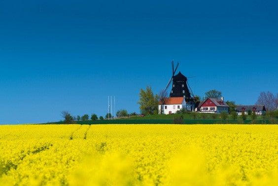 Malmo, suecia en primavera