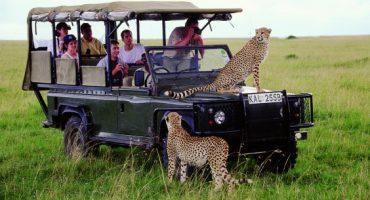 Vacances aventure pour voyageurs casses-cou