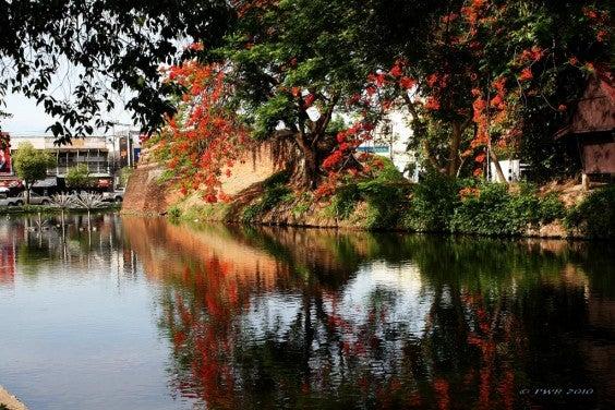 Chiang Mai Moat - blog eDreams