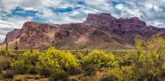 Montagnes Goldfield Arizona