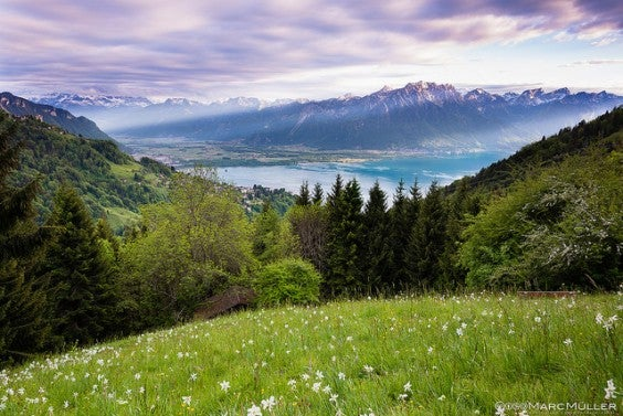 lago di ginevra, svizzera