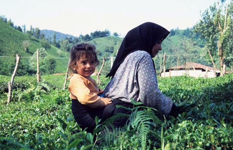 Maman Iran
