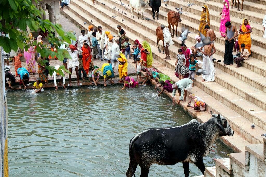 Pushkar en India