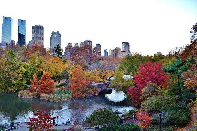 Central Park New York automne - blog eDreams
