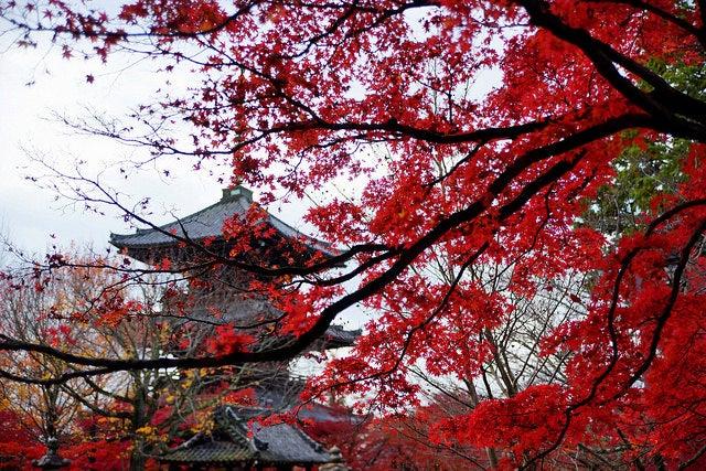 temple Kyoto automne - blog eDreams