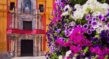 10 bonnes raisons d'aller à Malaga !