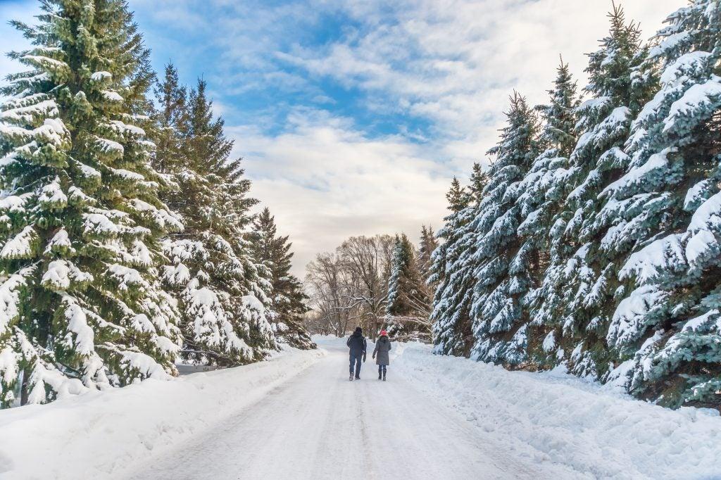 neige dans le jardin botanique de Montréal - eDreams