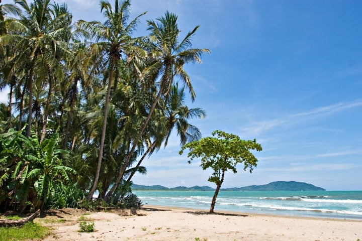 plage tamarindo costa rica - blog edreams