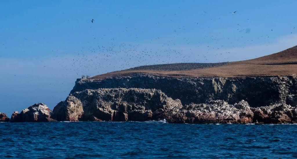 Réserve naturelle Las Islas Ballestas - blog eDreams