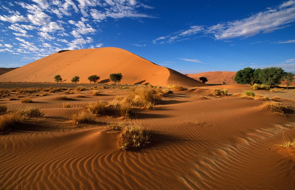 parc national namib - blog eDreams