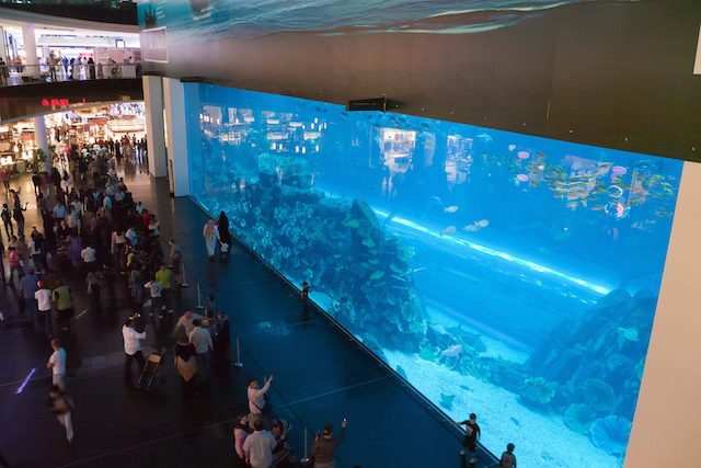 Aquarium Dubaï - blog eDreams