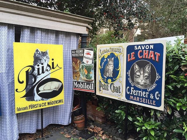 visiter amsterdam hors des sentiers battus kattenkabinet edreams