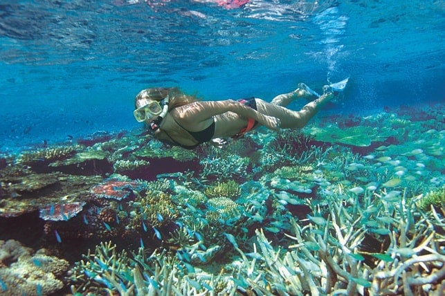 Grande Barrière de Corail en Australie - blog eDreams
