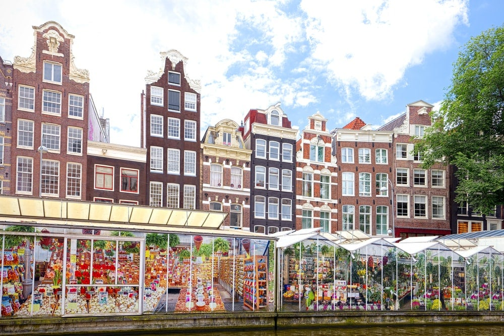 Bloemenmarkt Amsterdam - blog eDreams