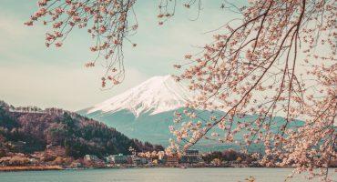 Les 20 plus beaux endroits du monde au printemps