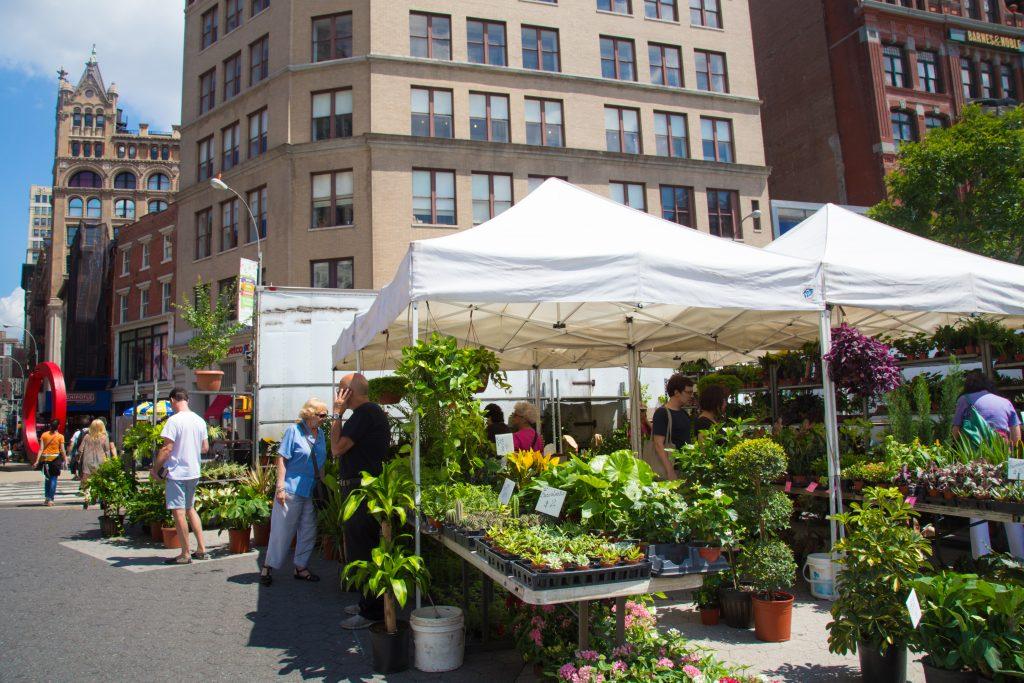 fleurs et plantes à l'Union Square Greenmarket - New York