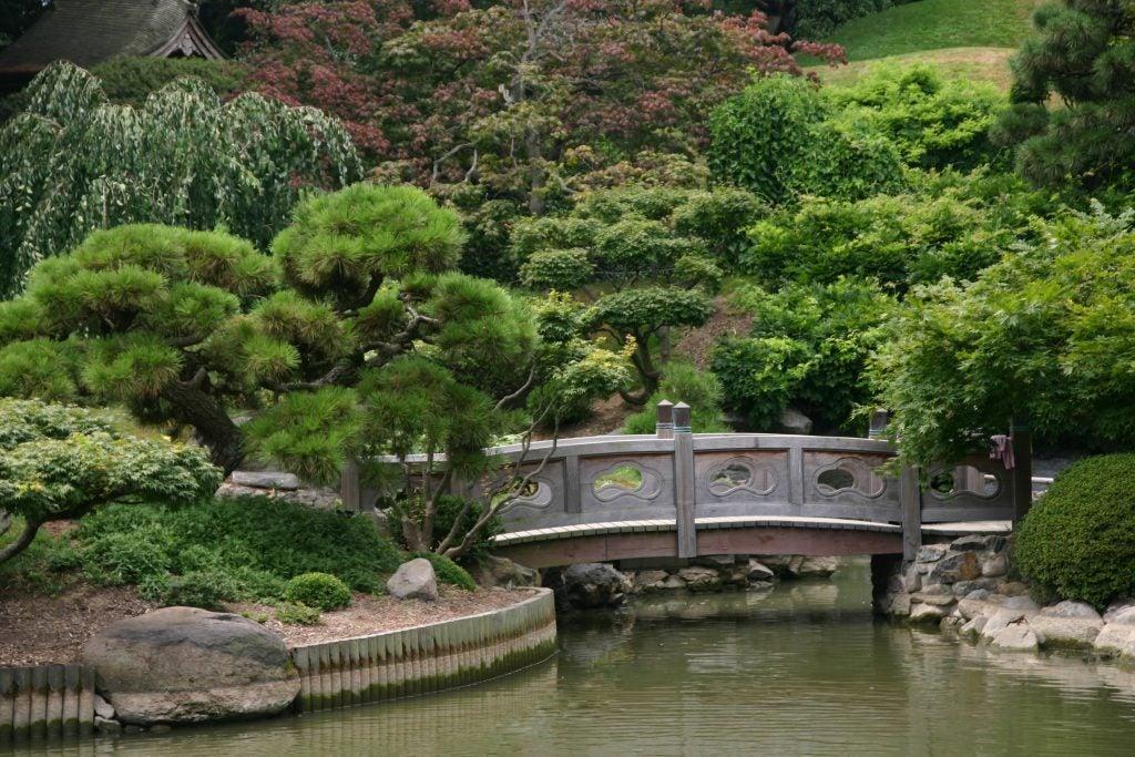 Jardin japonais Brooklyn